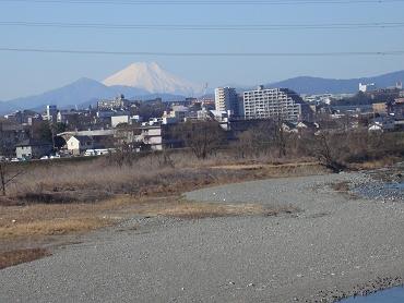 20070203akiruno_002s